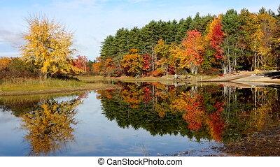 Fall Foliage Lake Reflection Maine - Colorful autumn leaves...