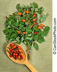 briar, wild rose. Dried herbs. Herbal medicine, phytotherapy medicinal herbs.