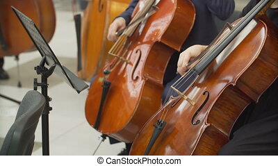 hands of musicians playing the cello in the orchestra -...