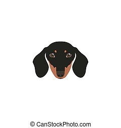 Head Dachshund Dog