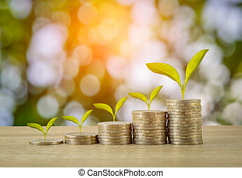 Coins with plant tree on wooden table with green bokeh...