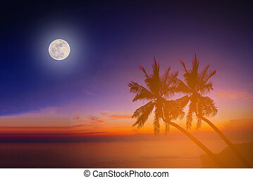Silhouette coconut palm trees on beach with the moon at...