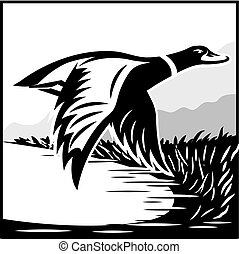 Monochrome illustration with flying wild duck over the water...