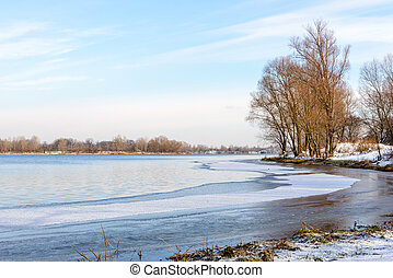 Winter Trees Close to the Dnieper River - Winter trees close...
