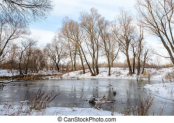 Winter Trees Close to the Dnieper River - Winter trees...