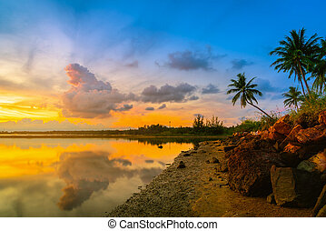 Sunset at the beach with coconut palm tree on blue sky...