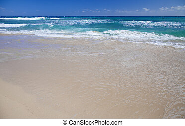 Fuerteventura, Canary Islands, Burro beach in Grandes Playas...