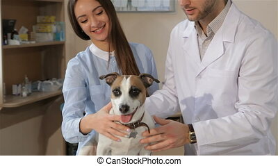 Female client shows her thumb up at the veterinarian clinic...