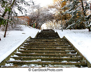 Stairs leading up to the Winter