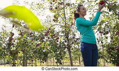 girl eating an apple in the garden