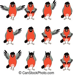 Set of bullfinches flat icons - Vector image of the Set of...