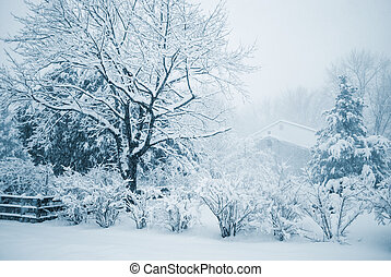 Winter Duotone - A blue toned Winter scene of a snow storm...