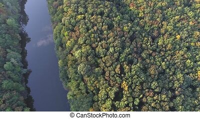View down. Flying over the forest and the river. Copter -...