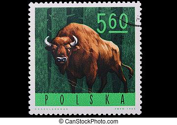 Poland - CIRCA 1965: A stamp bison - Poland - CIRCA 1965: A...
