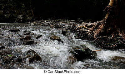 Stream - Mountain Stream