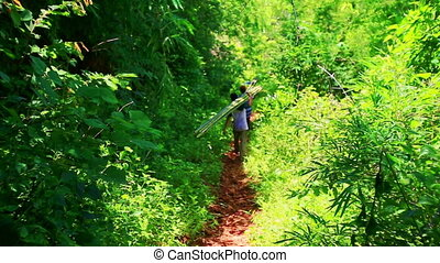People carrying long bamboo along ground path in tropical...