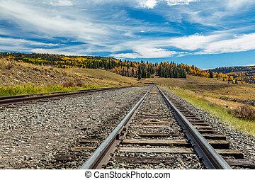 Narrow Gauge Tracks - A view down narrow gauge railroad...