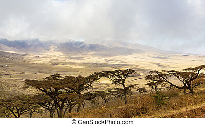 Beautiful and dramatic landscape in Ngorongoro - Beautiful...