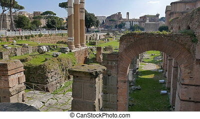 The ruins of the Roman Forum. Rome, Italy
