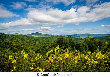 View from Highway 181, in Pisgah National Forest, North...