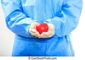 Doctor holding a heart on white background