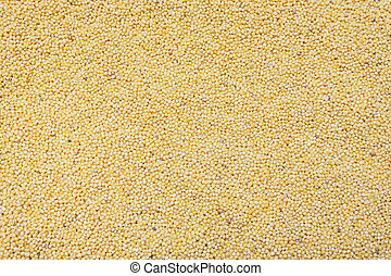 yellow millet cereal background, texture