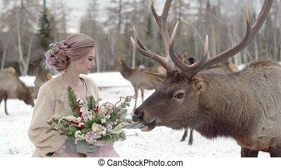 woman feeds deer winter forest