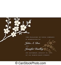 Vector Floral Background and Ornaments