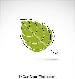 Hand-drawn illustration of simple hazel tree leaf isolated....