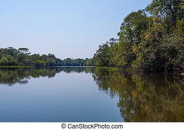 Panorama from Pantanal, Brazilian wetland region. Navigable...