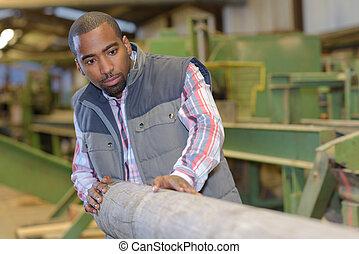 Man in sawmill