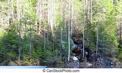 Waterfall in the forest. panorama