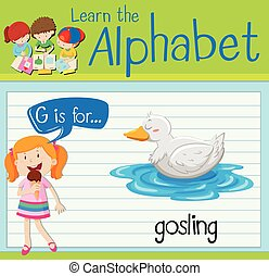 Flashcard letter G is for gosling illustration