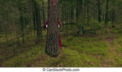 Santa claus hiding behind tree in the woods
