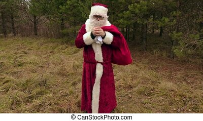 Santa Claus cold in the woods