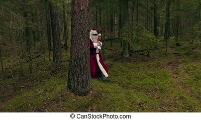 Santa Claus say hello to camera
