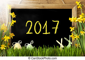 Sunny Narcissus, Easter Egg, Bunny, Text 2017 - Blackboard...