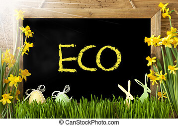 Sunny Narcissus, Easter Egg, Bunny, Text Eco - Blackboard...