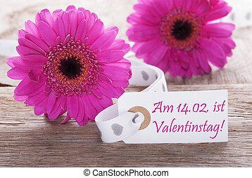 Pink Spring Gerbera, Label, Valentinstag Means Valentines...