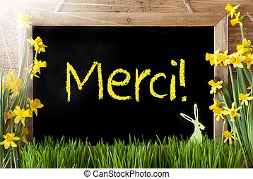 Sunny Narcissus, Easter Bunny, Merci Means Thank You -...