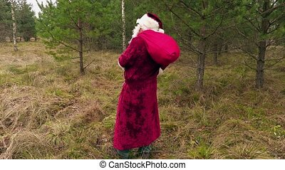 Santa Claus with gift bag in forest