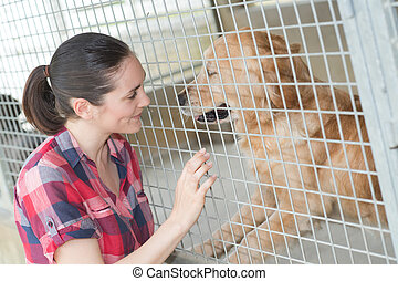 female kennel employee is checking dogs state