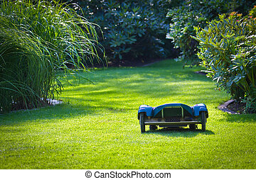 Robotic Lawn Helper - Photograph of a robotic lawn mower,...