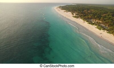 aerial view of a caribbean beach - Beautiful view of a nice...