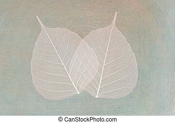 white foliage on ancient paper background
