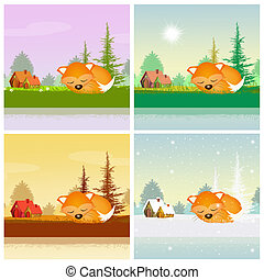 red fox in the four seasons - illustration of red fox in the...