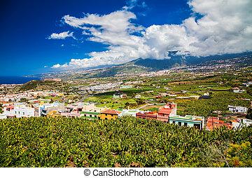 Puerto de la Cruz valley with banana plantations and...