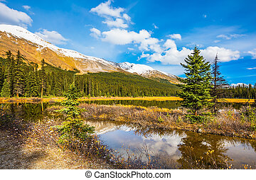 The boggy valley in the Rocky Mountains - The concept of...