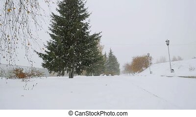 Park alley tree way winter during deep snowfall in...