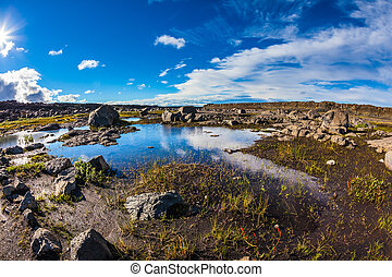The picture is made lens Fish eye - Small picturesque puddle...